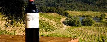 Vino Wein Villa Finca Costa Blanca