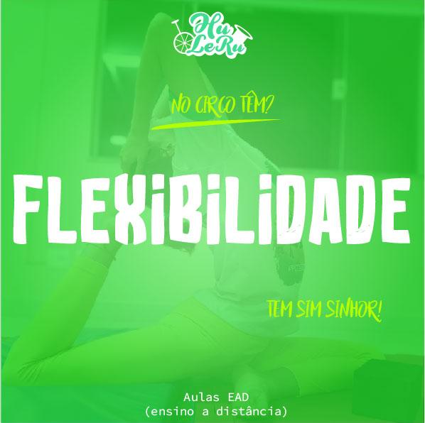 04 - FLEXIBILIDADE