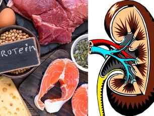 Proteine e danno renale: le evidenze scientifiche
