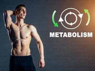 Il metabolismo: cos'è veramente? Come si può stimare nella pratica?