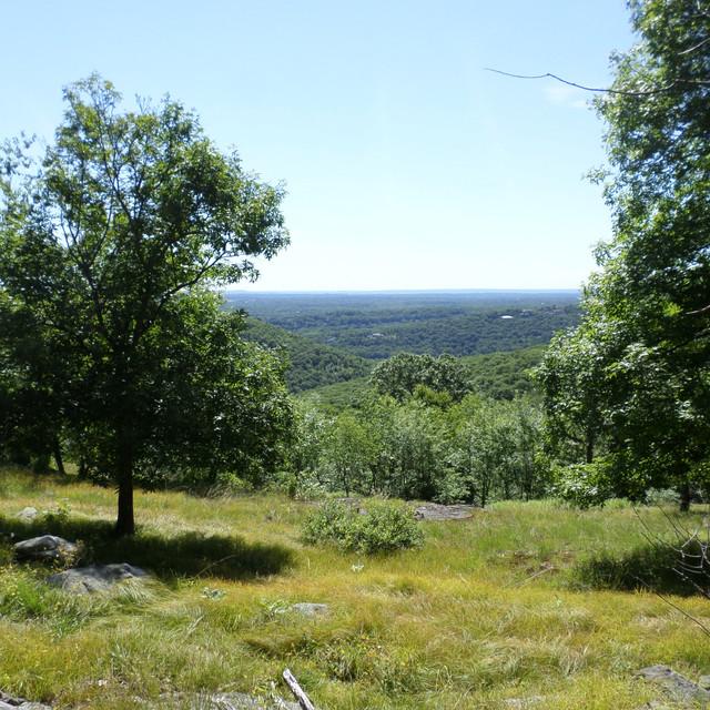 Twin Hill
