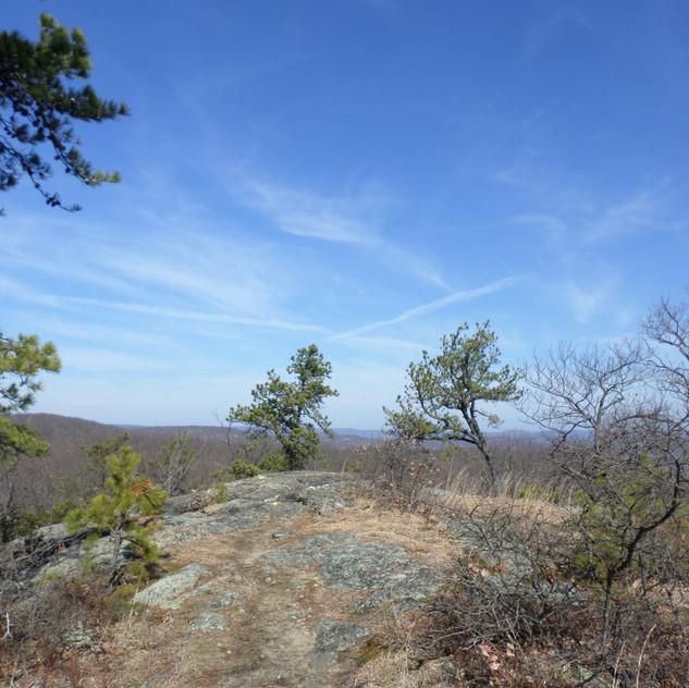 Wyanokie High Point & Carris Hill