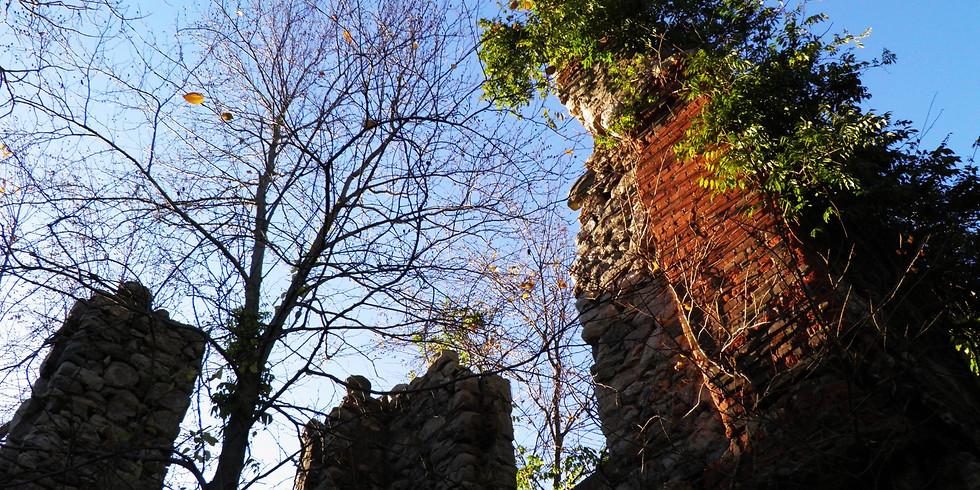 Castle Point & Van Slyke Estate