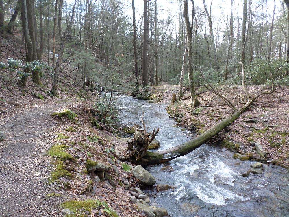Dunnfield Creek.