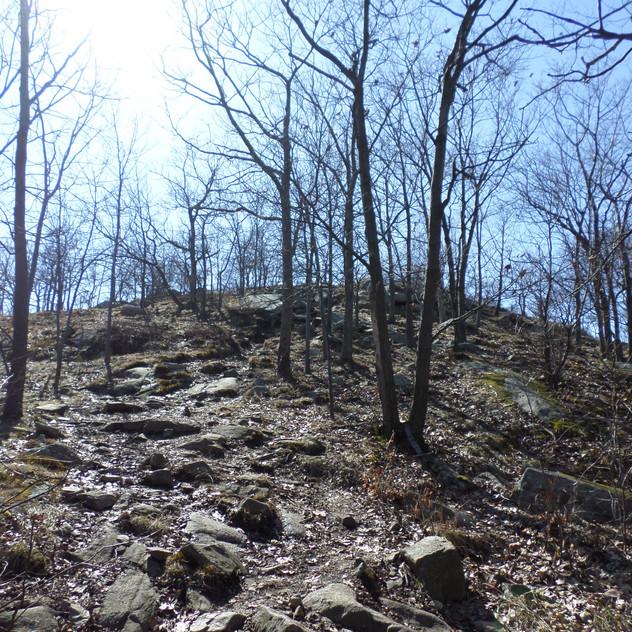 Bull Hill & Breakneck Ridge