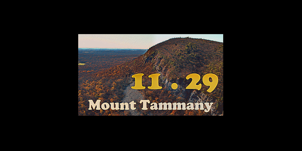 Mount Tammany (1)
