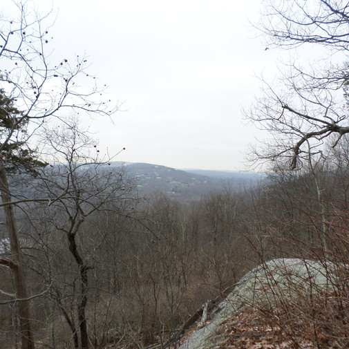 Ramapo Valley Reservation