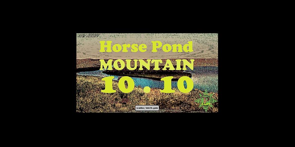 Horse Pond Mountain
