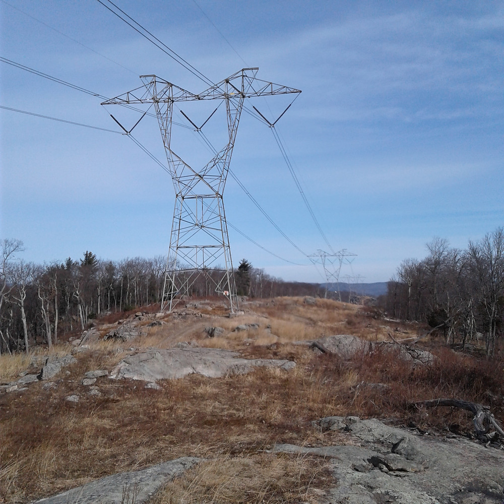 Power lines at the edge of the trail.