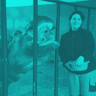 """Kimy Hulsmans Dierverzorger afdeling """"Moeras"""" (Nijlpaarden, Tapirs, Bongo's, Afrikaanse vogels) in de Antwerpse Zoo"""