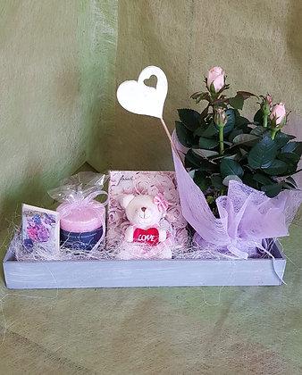 Combo mit Teddybär, Servietten, Dufterze rose und Karte
