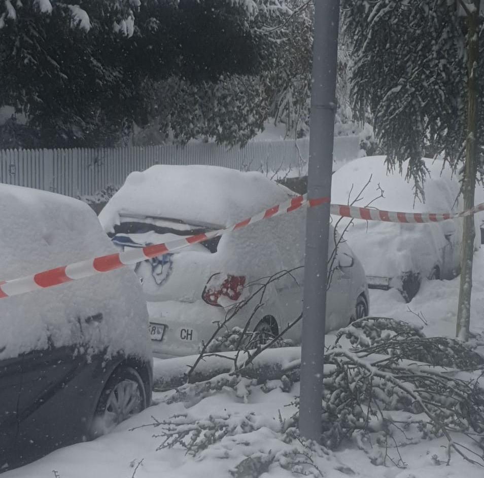 DreamPlant macht auch Winterdienst, Schneeräumung.