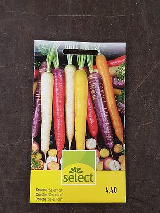 Samen Karotten 'Selection'