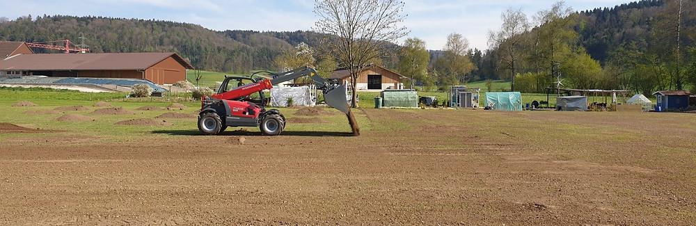 Rasen sähen, Bäume, Sträucher, Gemeinde, Gärtnerei, DreamPlant, Gartengestaltung, Klima, Grün, Rasen, Teleskoplader