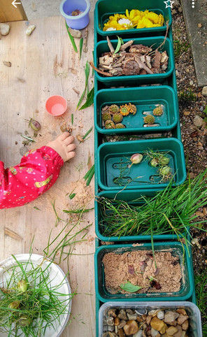 Sorting natural objects