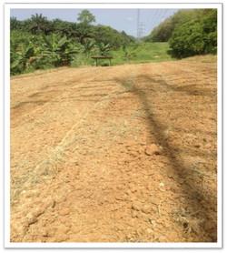 Ground Remediation