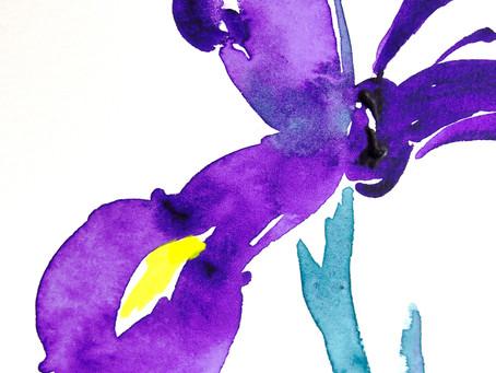 紫色のiris