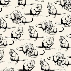 Brush-Tailed Bettong Pattern