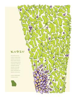 Invasive Poster: Kudzu