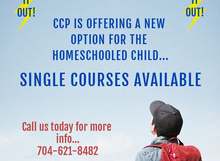 Single Course Option for homeschooler with learning disabilities or differences...