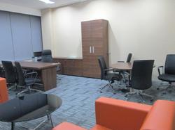 Furniture & Interior Vice CEO