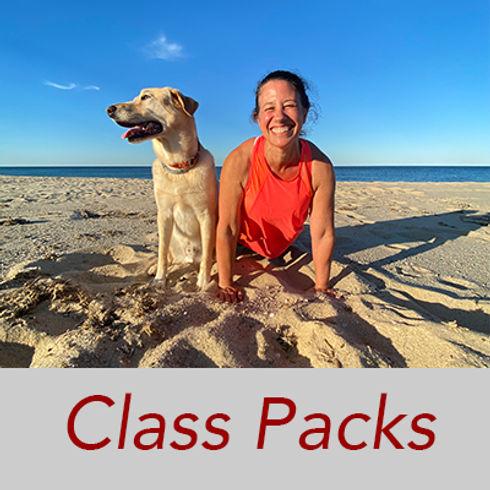 ClassPack3-2021-250x.jpg