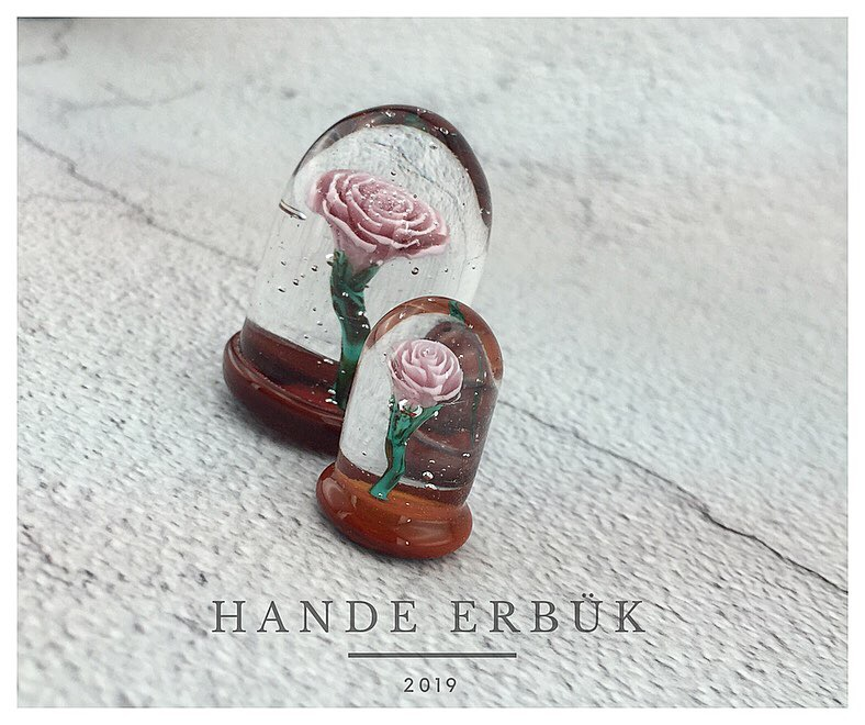 Little Prince's Rose