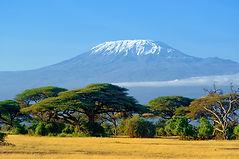 Kilimanjaro On African Savannah.jpg