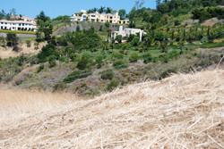 Latigo 1 acre lot 022