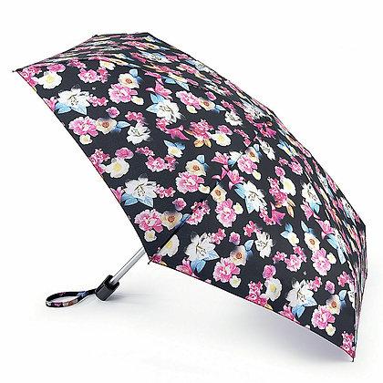 Tiny-2 Umbrella Shadow Lily