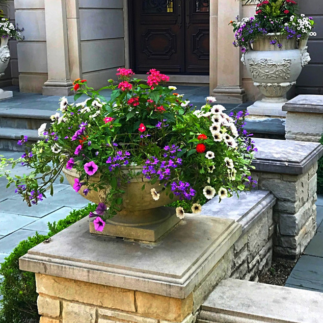 Summer Annuals in Dry-Cast Limestone Pots by Longshadow