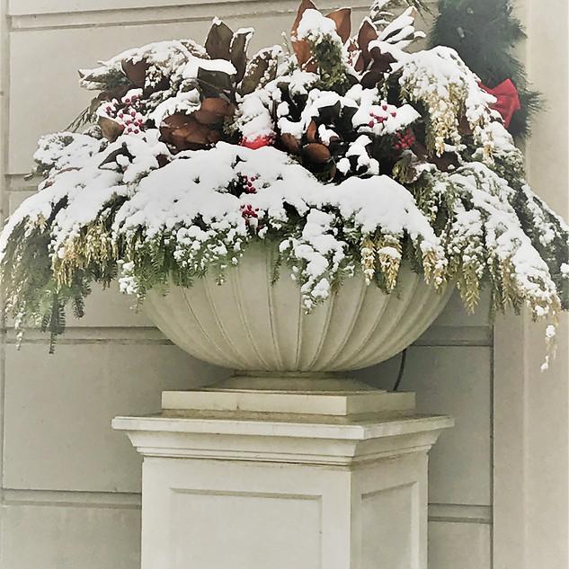 Handsome Winter Display