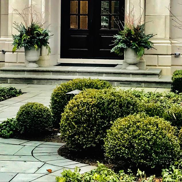 Elegant Seasonal Pots