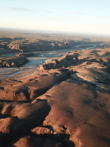 Drone view.JPG