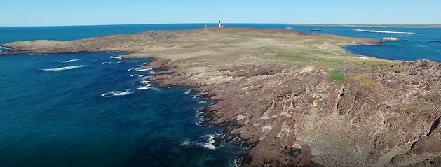 Isla Pinguino.png