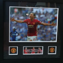 Picture & Logo Frame
