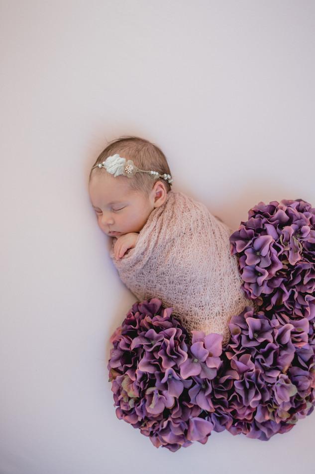 Newbornshooting -2.jpg