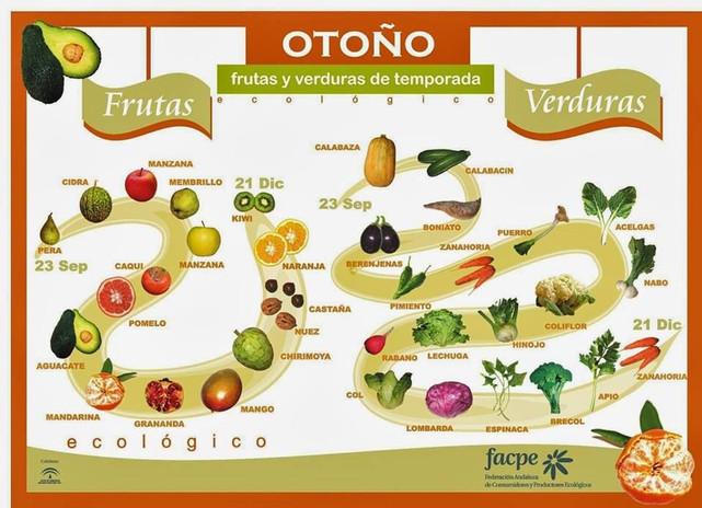 OTOÑO.jpg