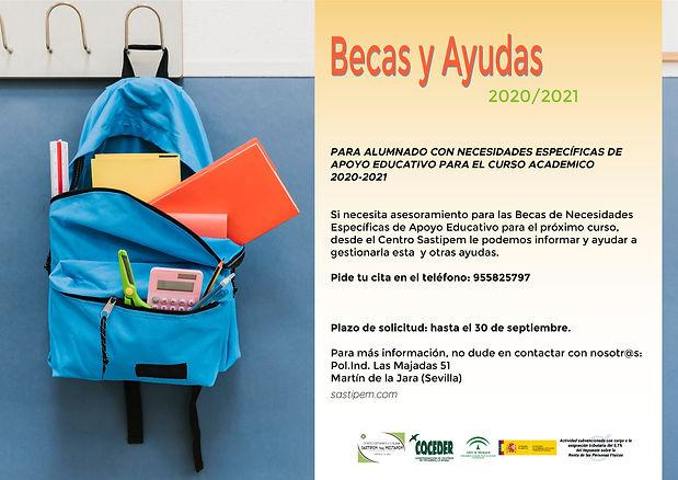 Cartel Becas 2020 EducacionEspecial v01.