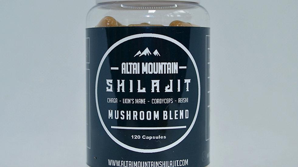 Altai Mountain Shilajit Mushroom Blend