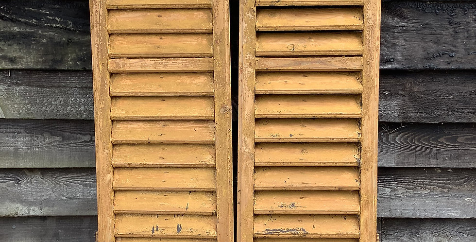 PAIR OF MUSTARD YELLOW WINDOW  SHUTTERS A36