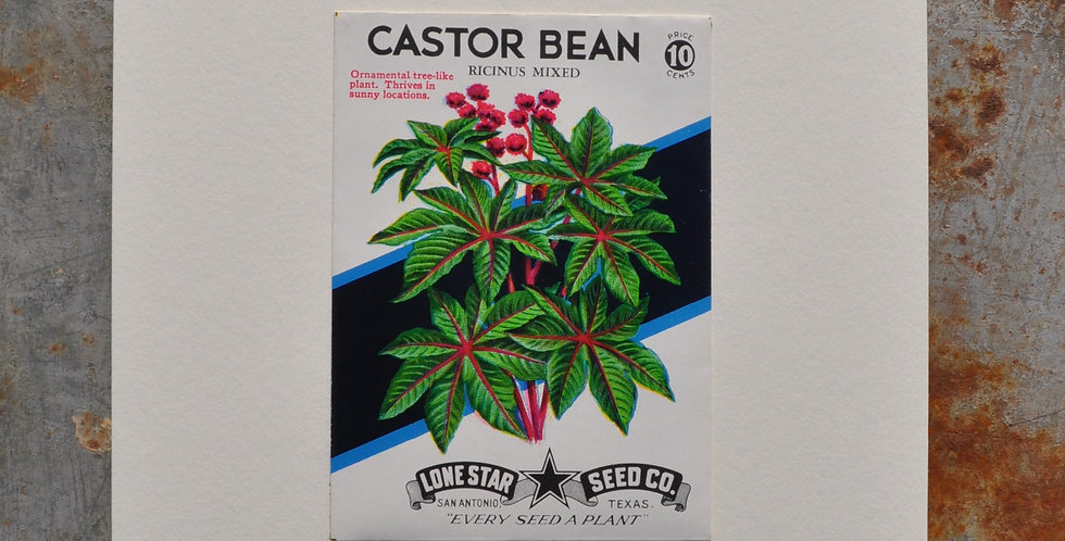 VINTAGE CASTOR BEAN SEED PACKET