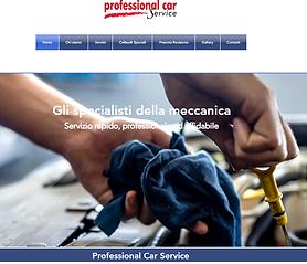 Professional_Car_Service_Alizone.png