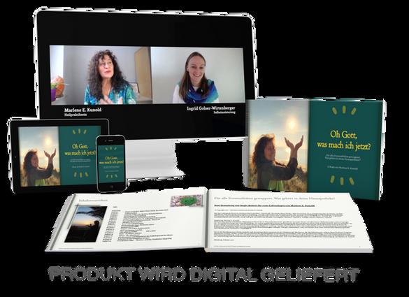 Hausapotheke E-Book und Video png