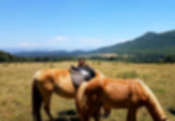 Equestrian vacations in Italy, cheap Horse Riding, horse Trekking Holidays, equestrian Holidays, ranch Riding Holidays