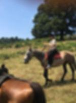 riding in rome, horseback vations in italy, equestrian holidays in italy, horseriding in rome, offerteVacanza, trekkingTour, cofanettiRegalo Viaggi, cavallo, horse, roma, horse riding, italy travel, passeggiate a Cavallo Roma trekking, Escursioni