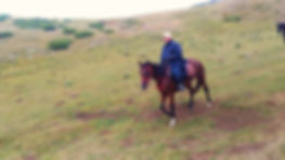 Equestrian Italy -horseridingtrails #horseRidingholidaysineurope #horsetrekkinginrome #equestrian