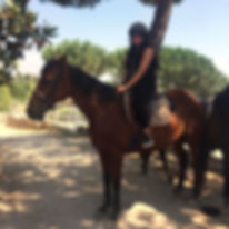 Equestrian Italy - Horse riding Trails in Italy, Pony trekking & Ranch vacations in Europe