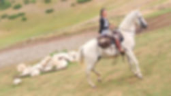 Equestrian Italy - Horse riding Trails in Italy &  Horseback riding vacations in Europe