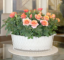 Mini Rose wire basket.jpg
